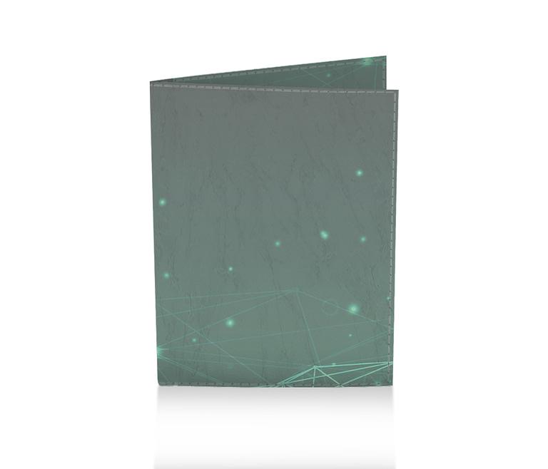 dobra porta passaporte plexus wtf