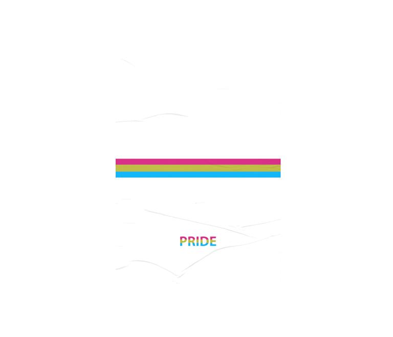 dobra - Lambe Autoadesivo - Pansexual Pride - Minimalist White