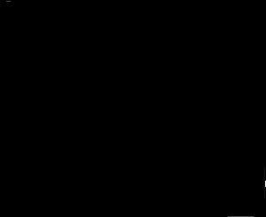 necessaire miniatura icone preto