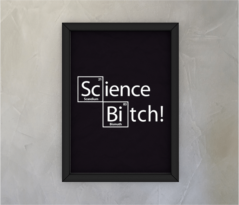dobra - Quadro - Science Bitch!
