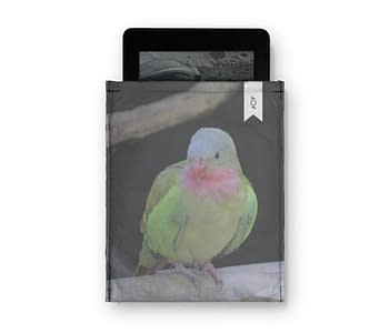 dobra - Capa Kindle - The colourful princess parrot