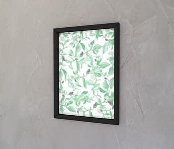 dobra - Quadro - rosaceae