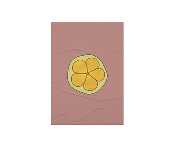 dobra - Lambe Autoadesivo - Fruto de Pequi